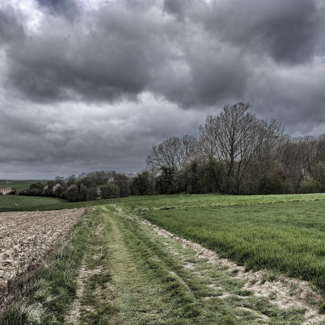 Hawthorn Ridge Crater (trees at the right), photographed as seen from the German lines.  ©Nick J Stone
